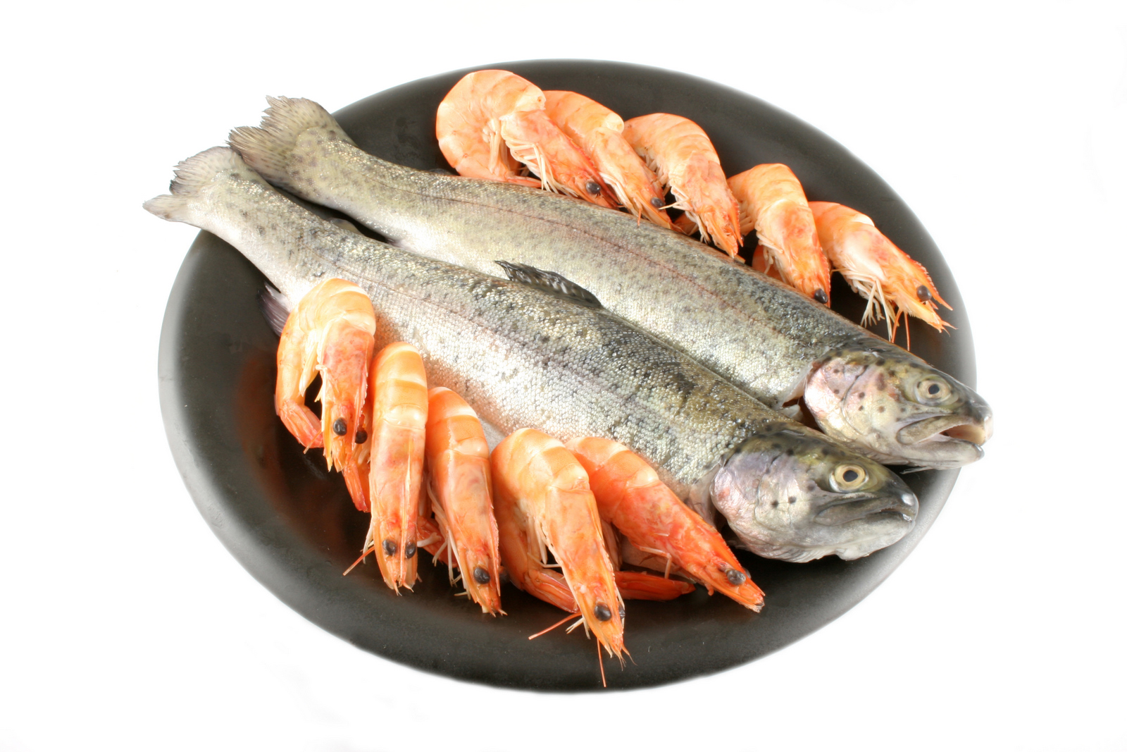 Trout and Shrimps